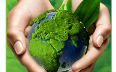 Go Green Initiative Environmental friendliness activity embraced by Magnon Interiors.
